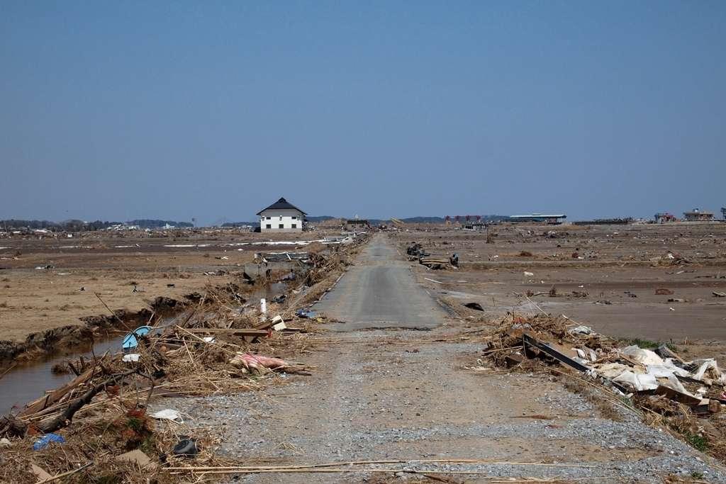 Les scientifiques chargés d'étudier le déferlement de la vague autour dans la zone d'exclusion de Fukushima ont été étonnés de découvrir des constructions intactes là où tout a disparu. Ils ont également vu des troupeaux de vaches vivant à l'état sauvage. © Jun Teramoto, Flickr, CC by-sa-2.0