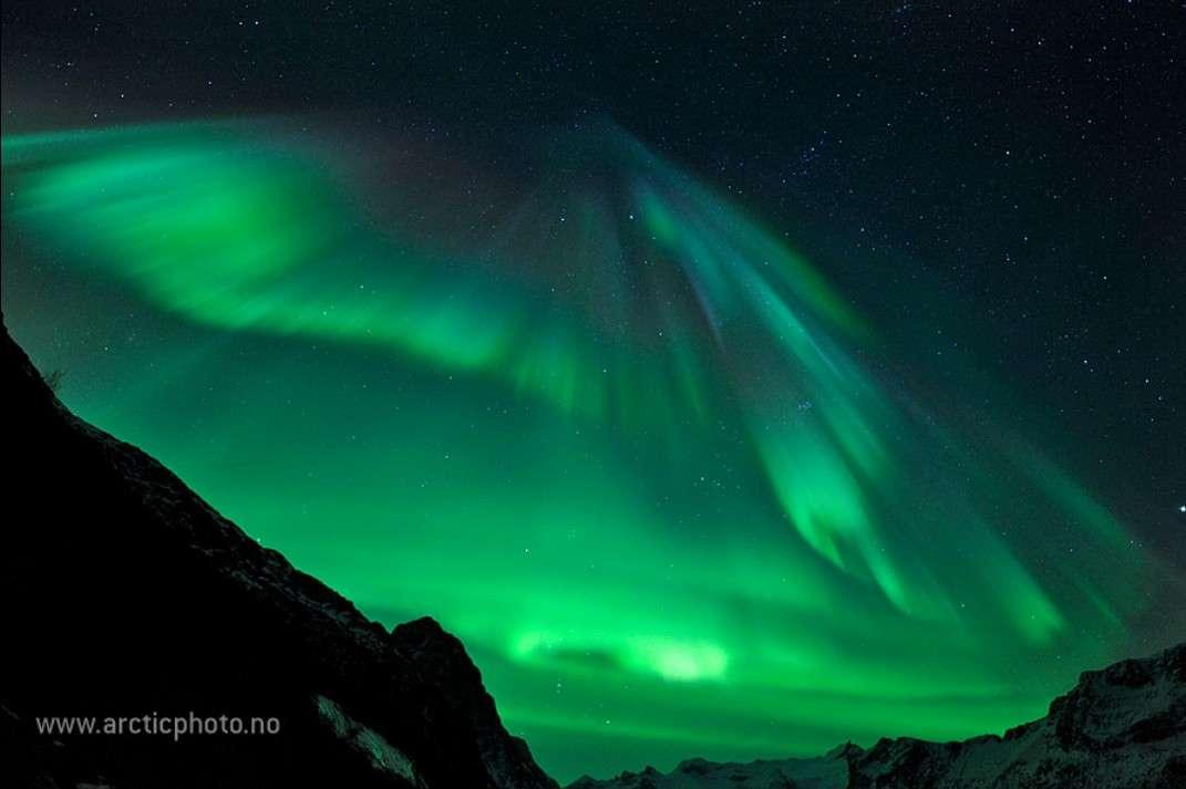 Un éventail céleste se déploie le 22 janvier dans le ciel nocturne de la Norvège. © Bjørn Jørgensen (http://www.arcticphoto.no/)