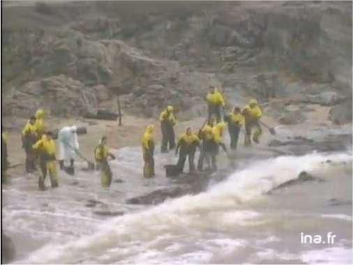 Des bénévoles en ciré jaune ramassent le sable et les algues souillés par le fuel sur les plages du Croisic. En Loire-Atlantique, le département le plus touché, les quelque 11.000 personnes participant au nettoyage ont déjà, en ce début du mois de janvier 2000, récupéré 25.000 tonnes de déchets. © Ina