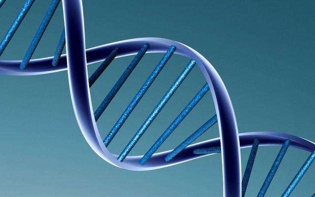 La double hélice de l'ADN renferme bien des mystères. © Caroline Davis, Flickr, CC