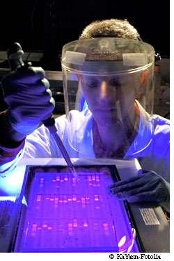 Les chercheurs de l'Inserm ont identifié un biomarqueur unique d'un grand nombre de cancers. © KaYann / Fotolia