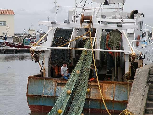 Si la réforme de la PCP ne débouche pas sur accord prenant en compte leurs intérêts communs, l'avenir s'annonce sombre pour les poissons… comme pour les pêcheurs. © F. Panassac, Flickr, CC by-nc-sa 2.0