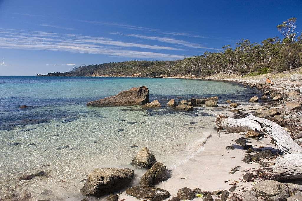 Le parc national de Maria Island se trouve en Tasmanie. Réserve terrestre très importante pour les oiseaux, elle est aussi un parc maritime, dans lequel en 2007 un cargo a été coulé pour former un récif de plongée. © JJ Harrison, Wikipédia, cc by sa 3.0
