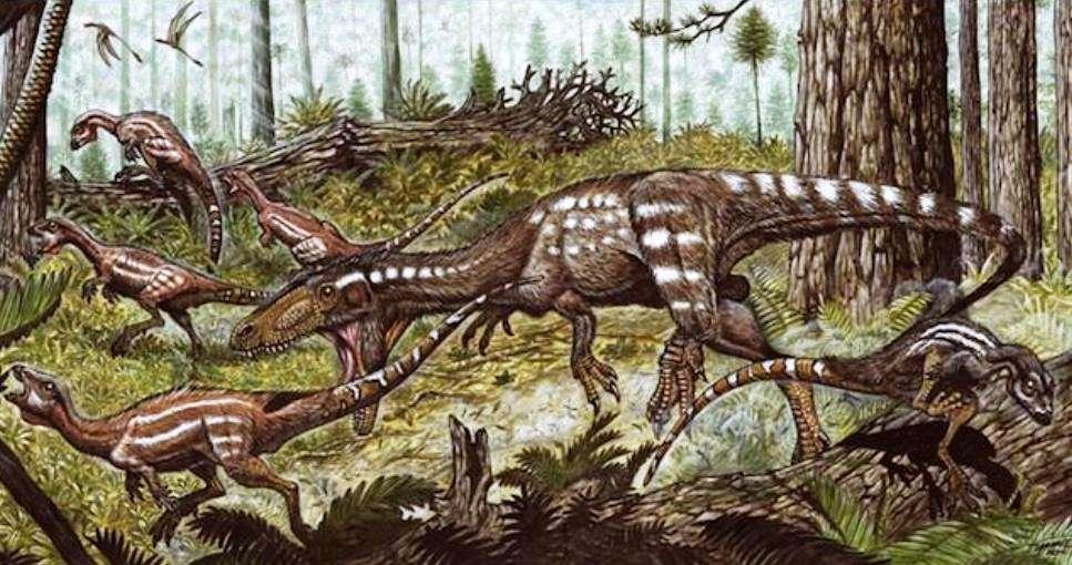 Tachiraptor, un dinosaure théropode de 1,5 mètres de long (au centre) qui vivait dans ce qui est maintenant le Venezuela il y a un peu plus de 200 millions d'années, est un proche cousin des dinosaures qui ont évolué plus tard pour donner les grands carnivores tels que les allosaures. © Maurilio Oliveira