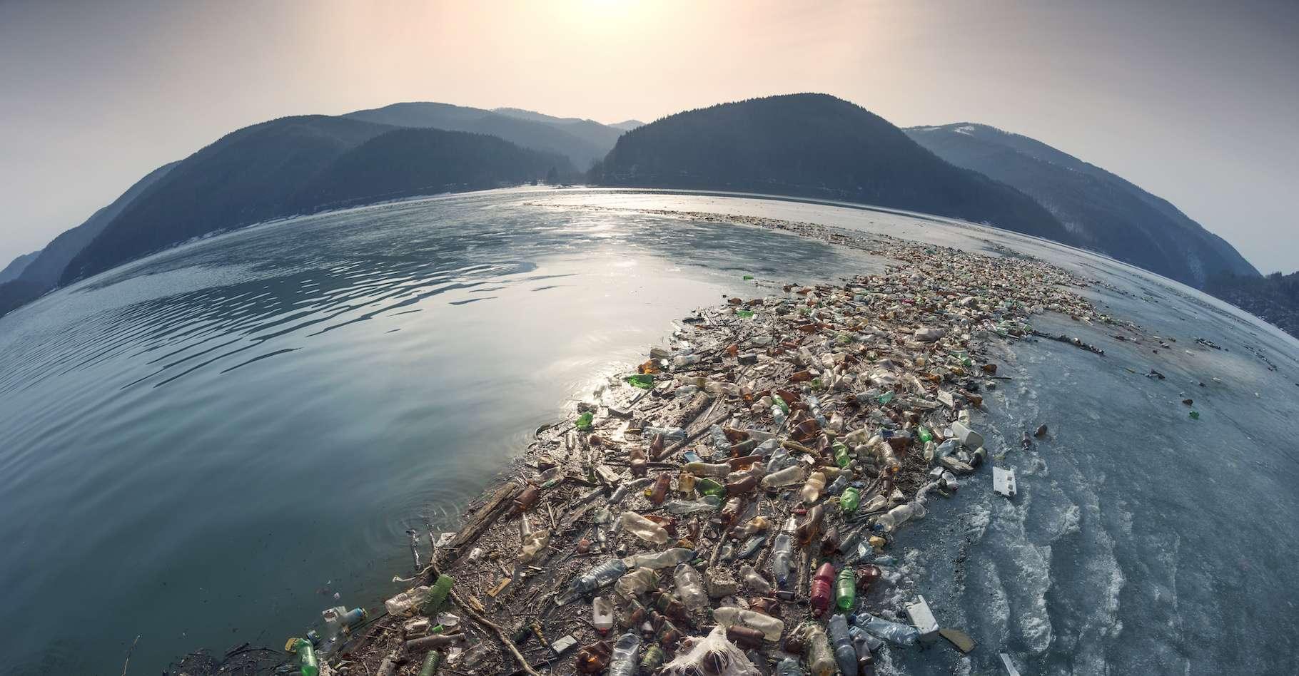 Pour sauver les océans, il est nécessaire d'opter pour une approche holistique qui englobe tous les aspects de l'écosystème. © panaramka, Adobe Stock
