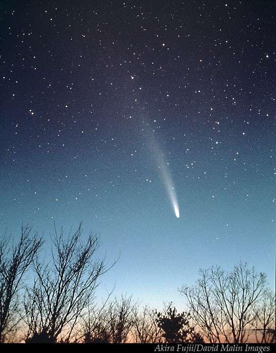 Meteore , comete et asteroidi  A4093acecc_50035174_ben2