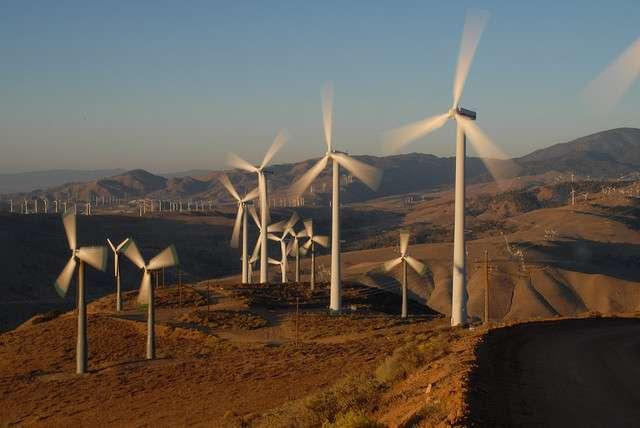 Les éoliennes du parc éolien de Pine Tree en Californie ont tué six aigles dorés cette année. © Antonio Villaraigosa, Flickr, cc by nc 2.0