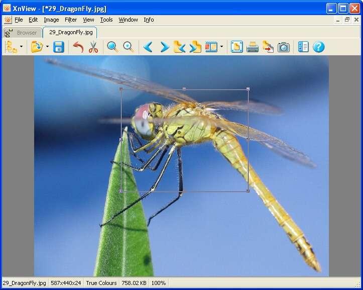 XnView, un logiciel agile