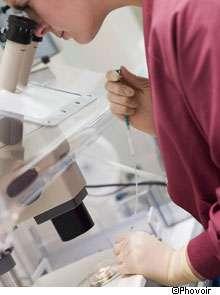 Cinq nouvelles régions chromosomiques ont pu être identifiées comme favorisant la maladie de Parkinson. © Phovoir