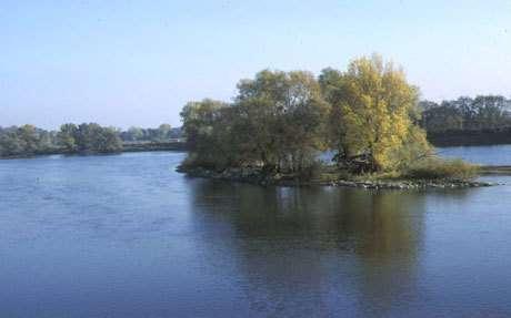 """Le programme """"Loire Nature"""" et la préservation de l'eau"""