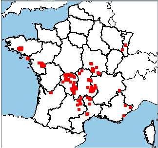La carte de France des mines d'uranium. Le Limousin et l'Auvergne sont particulièrement bien lotis, ainsi que le nord de la région Midi-Pyrénées et du Languedoc-Roussillon. En tout, environ 200 sites ont un jour été exploités. © IRSN
