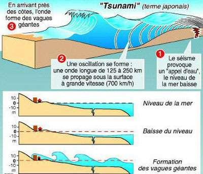 Schéma du mécanisme d'un tsunami (Crédit : Terre et Volcan).