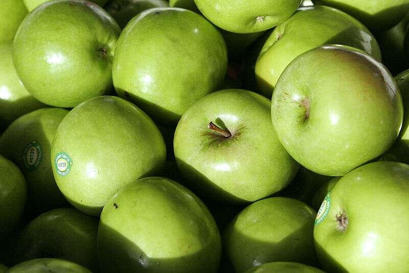 La pomme Granny Smith est un cultivar très populaire. Il s'agit de la troisième variété la plus cultivée en France. Sa chair est ferme, croquante et juteuse. Elle tient bien la cuisson. De plus, son goût légèrement acidulé est délicieux. © Far0007, Wikimedia Commons, GFDL 1.2
