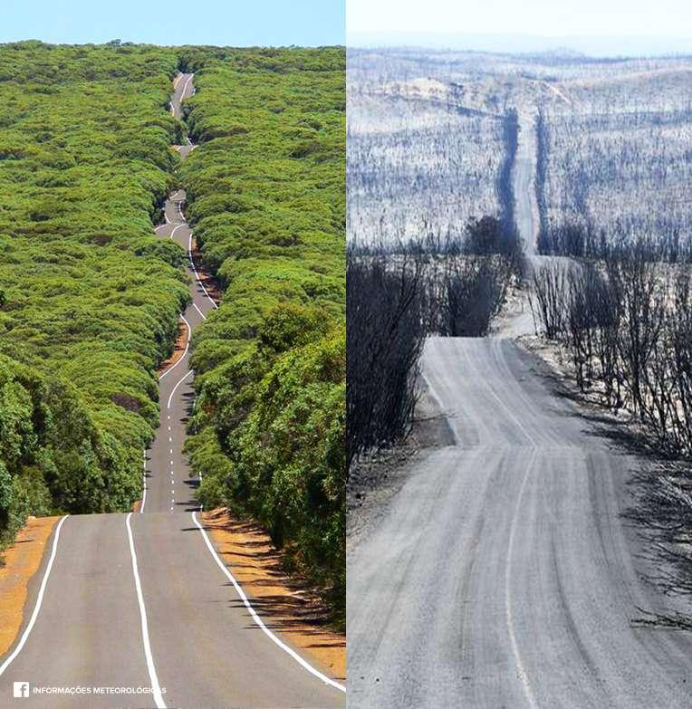 La route menant au parc national de Flinders Chase sur l'île de Kangourou avant et après les incendies. © Facebook
