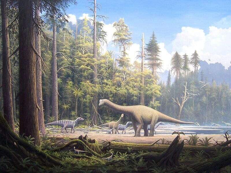 À la fin du Mésozoïque, les dinosaures dominaient les milieux terrestres. Ces reptiles apparus durant le Trias supérieur sont encore représentés de nos jours par les oiseaux, dont la lignée a survécu à la crise du Crétacé-Tertiaire. © Gerhard Boeggemann, Wikimedia Commons, cc by sa 2.5