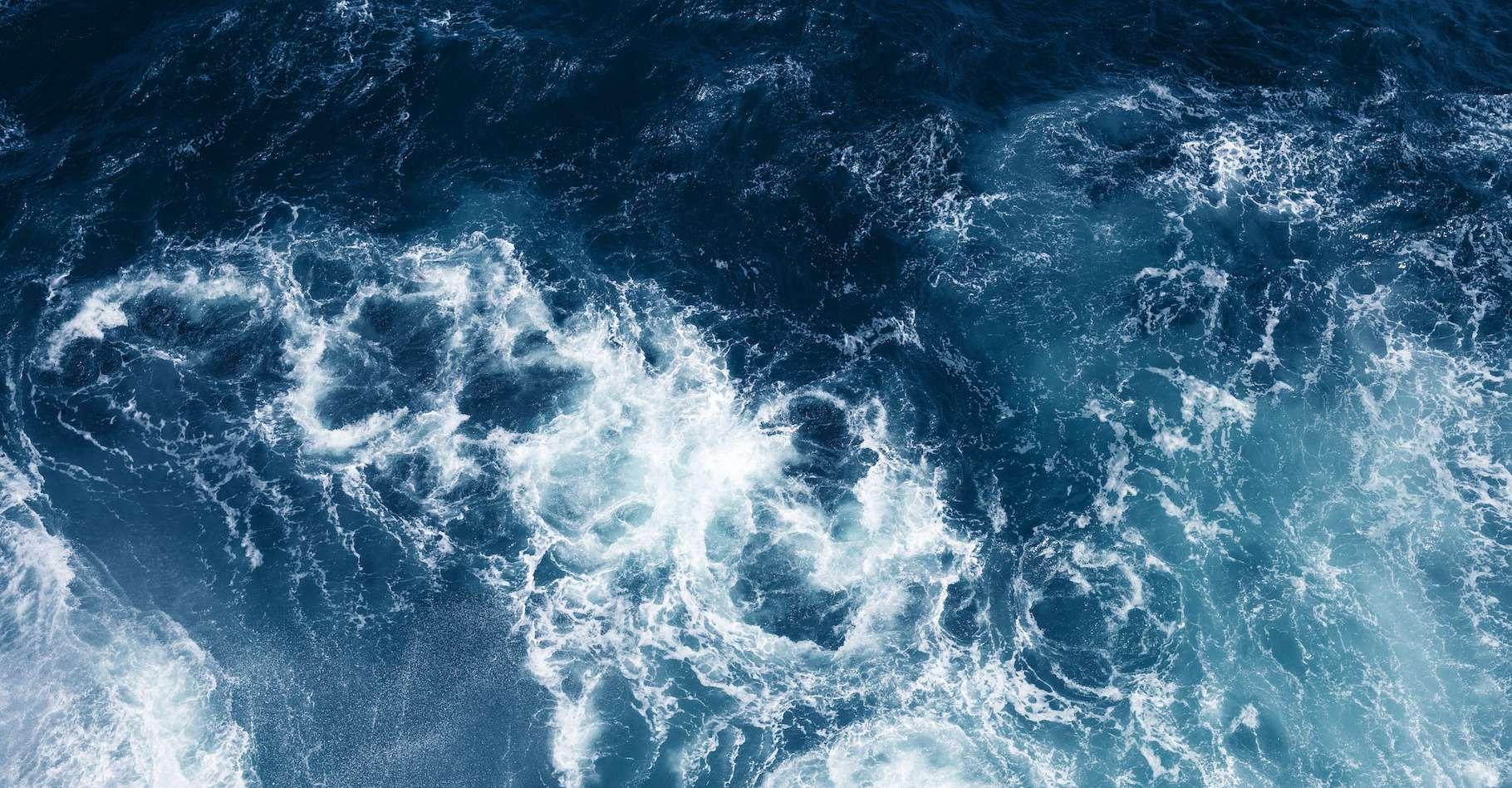 Des traces de mercure ont été retrouvées dans la fosse des Mariannes, dans les poissons vivants entre 7.000 et 11.000 mètres de profondeur. © zolga, Adobe Stock