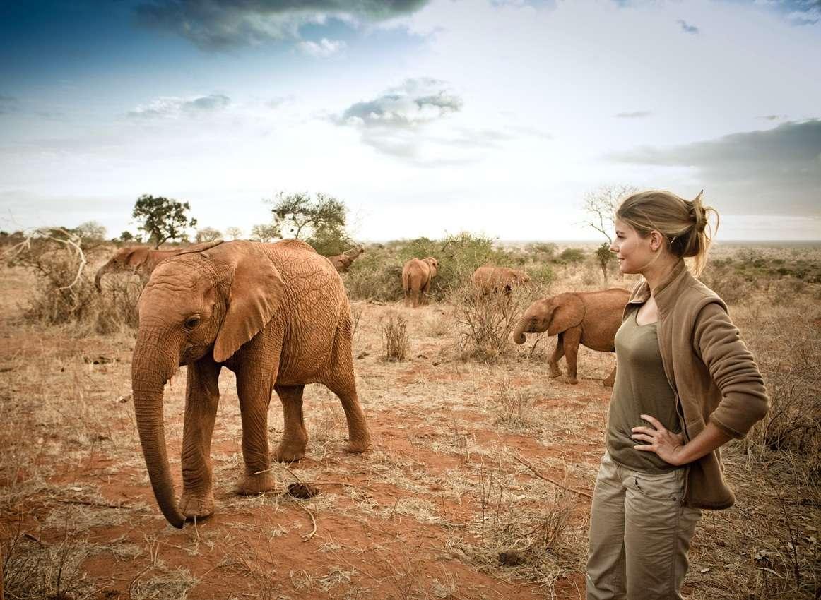 Olivia Mokiejewski à côté d'un éléphanteau, recueilli, choyé mais pas encore sauvé. © France 2