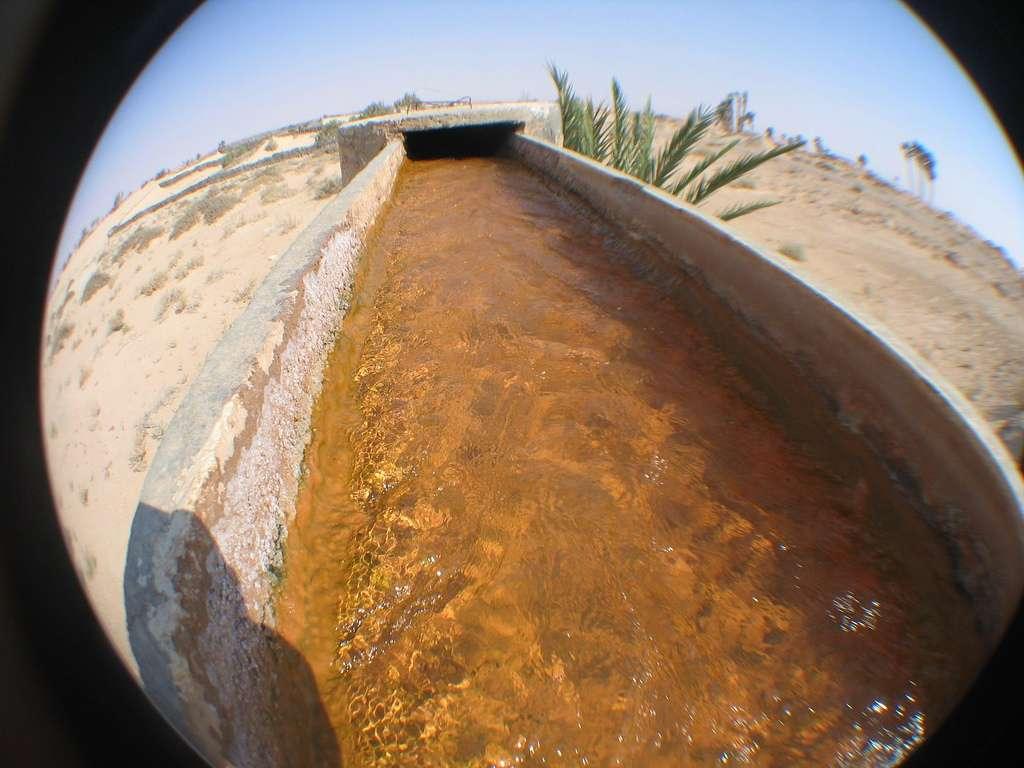 En région désertique, nombre d'agriculteurs font appel à la technique du goutte-à-goutte, qui peut réduire jusqu'à 60 % la consommation en eau. © THEfunkyman, Flickr, cc by nc nd 2.0