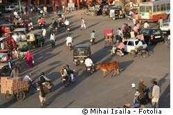 En Inde, la médecine traditionnelle et multiséculaire sera désormais un peu mieux protégée. © Mihai/Isaila/Fotolia