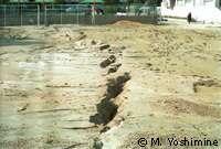 Tremblements de terre, points critiques et fractales