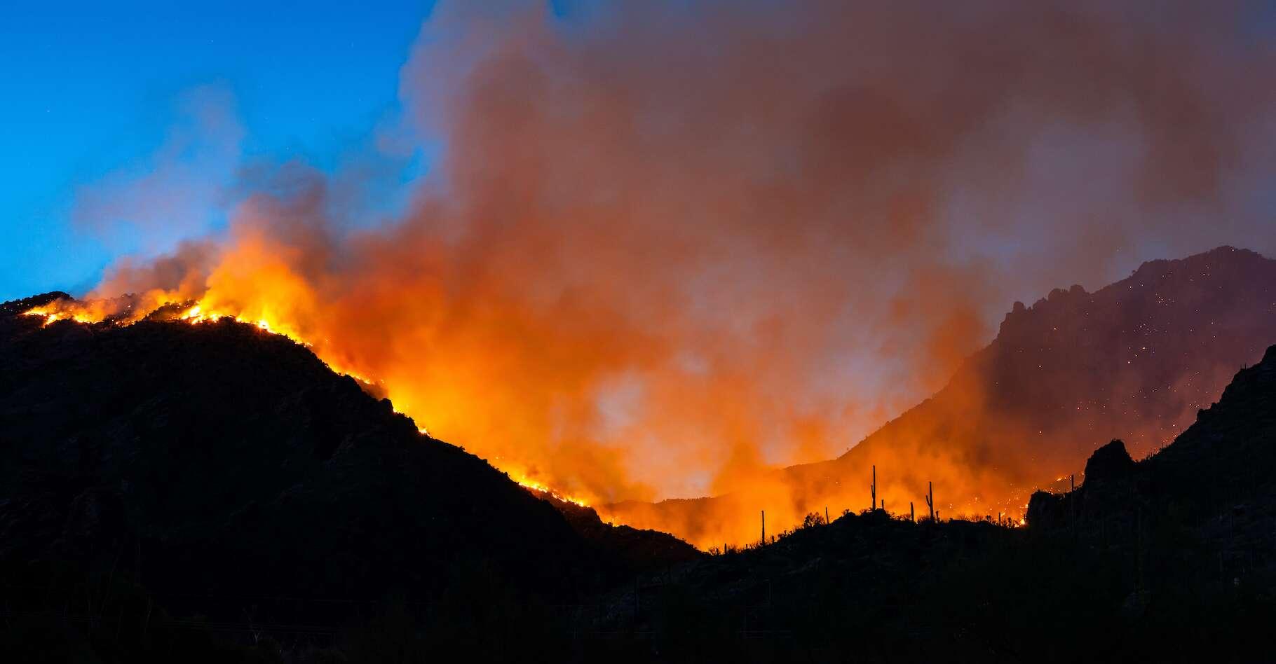 Depuis plusieurs semaines, un incendie ravage le nord de Tucson (Arizona, États-Unis). © SE Viera Photo, Adobe Stock