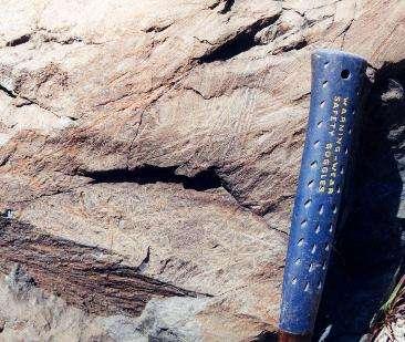 Cette komatiite date de 3,5 milliards d'années et elle provient de la région de Barberton, là où coule la rivière Komati. Crédit : Liz Johnson