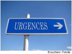 https://cdn.futura-sciences.com/buildsv6/images/largeoriginal/a/c/0/ac0d07442e_50029348_urgence-zuchero-fotolia.jpg