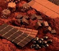 Du cacao au chocolat, un dossier pour les gourmands. © DR