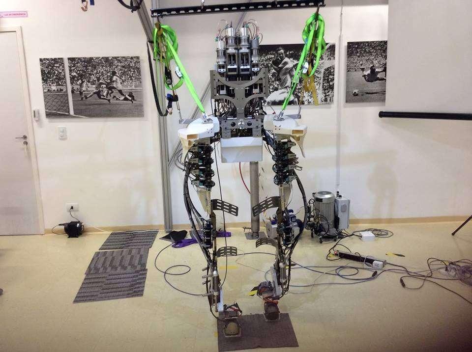 L'exosquelette mis au point par l'équipe de Miguel Nicolelis est le résultat de près de 30 ans de recherche et développement. Contrôlé par la pensée à l'aide d'un casque EEG, il est capable de produire un retour d'effet grâce auquel la personne peut avoir la sensation qu'elle marche. © Miguel Nicolelis