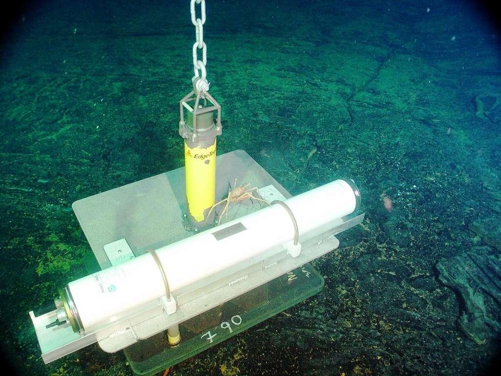 Un hydrophone déposé sur les flancs du volcan Axial Seamount. © Bill Chadwick, Oregon State University