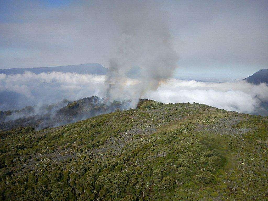 L'incendie de l'île de la Réunion ne progresse plus. © État de la Réunion