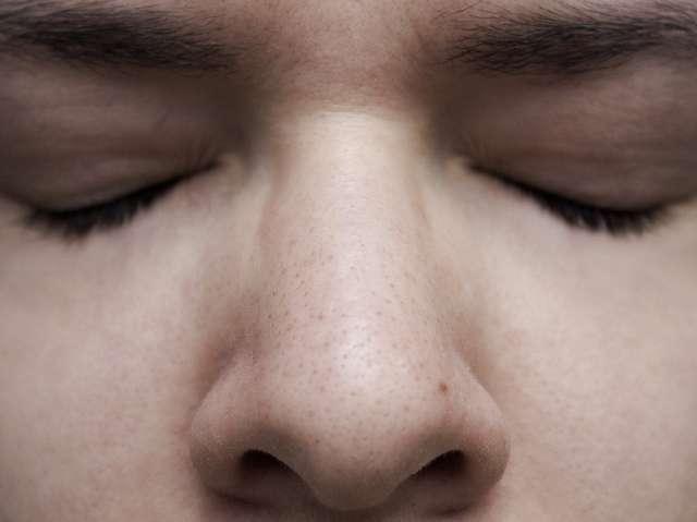 Le nez permet l'entrée de l'air, inspiré dans le système respiratoire. © Alessandra Celauro, Flickr, CC by-nc 2.0