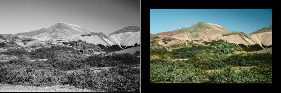 Pour redonner des couleurs à un cliché noir et blanc, l'astuce est de trouver une image suffisamment semblable... © G. Charpiat, M. Hofmann, B.Schölkopf / Montage Futura-Sciences