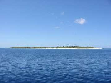 L'île Surprise, du récif d'Entrecasteaux, à 230 km au nord de la Nouvelle-Calédonie, où les auteurs étudient le fonctionnement des écosystèmes depuis plus d'une décennie. Sa faible élévation la rend particulièrement sensible à la montée du niveau des océans suite au réchauffement climatique, avec une probabilité forte d'inondation permanente et totale d'ici la fin du siècle. © Jean-Louis Chapuis