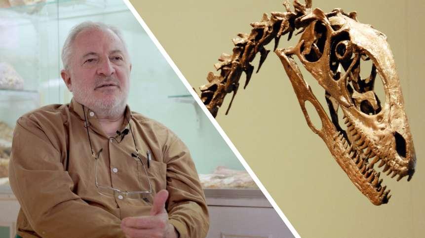 Interview : comment se forment les fossiles de dinosaures ?
