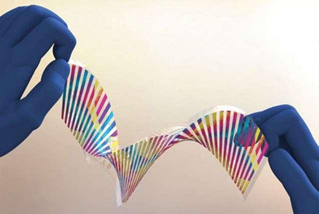 Des chercheurs de l'université de Californie à Berkeley, aux États-Unis, ont créé ce qu'ils appellent une « peau caméléon » flexible qui réagit lorsqu'elle est pliée ou étirée. Le procédé repose sur une technique de gravure nanométrique qui joue sur la réfraction de la longueur d'onde de la couleur. © Connie Chang-Hasnain, UC Berkeley