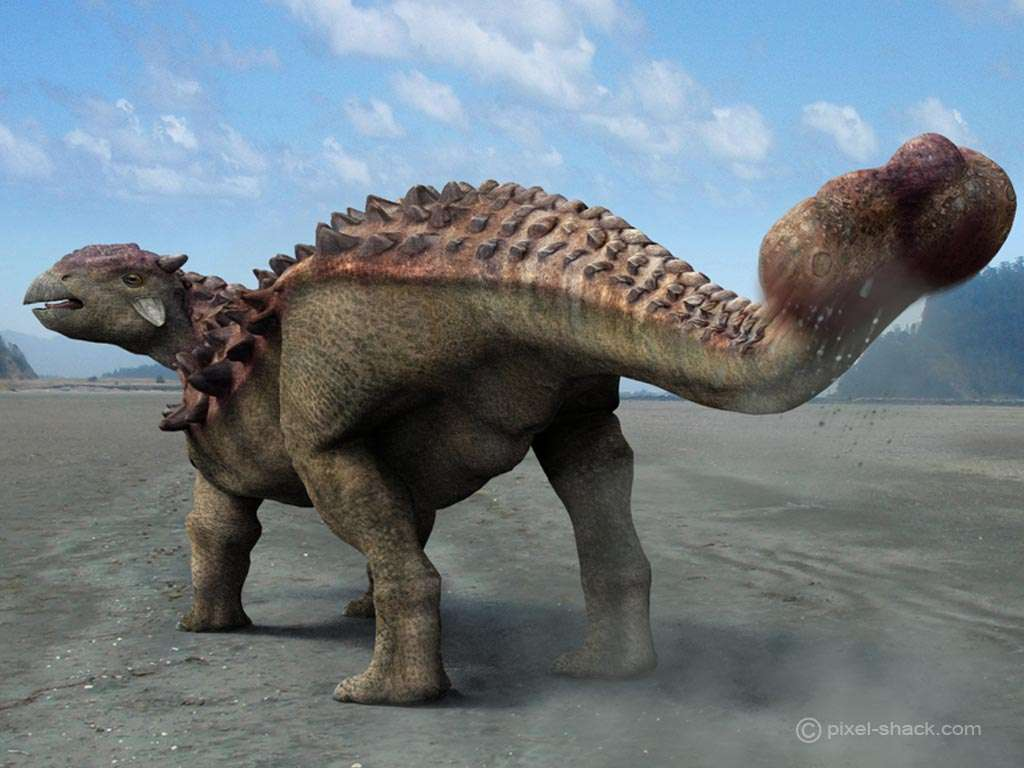 Ankylosaurus. © Courtesy of Jon Hugues, www.pixel-shack.com