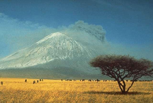 La savane est un biome caractérisé par de faibles précipitations annuelles et parsemé d'arbustes ou arbres. Ici, la savane herbeuse au pied de l'Ol Doinyo Lengaï, en Tanzanie. © United States Geological Survey, DP
