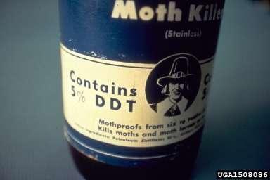 Le DDT fut très largement utilisé comme insecticide, avant de se révéler être un polluant organique persistant. © USDA Forest Service - Region 8 Archive, USDA Forest Service, Bugwood.org CC by 3.0