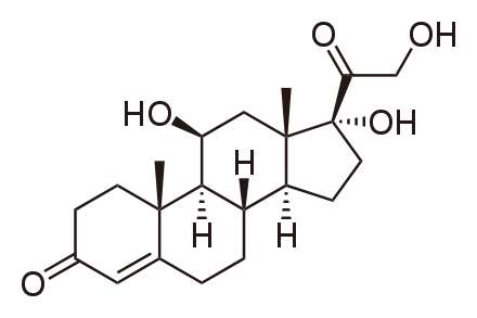 Le cortisol est un glucocorticoïde. © Domaine public