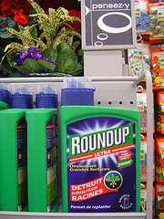 L'étiquette de l'herbicide foudroyant ne serait pas conforme à sa composition. © David Reverchon CC by-nc-nd