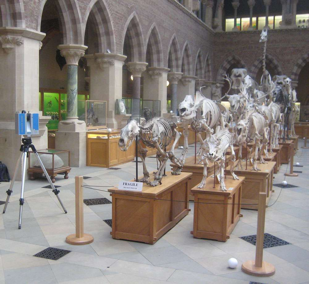 Le scanner utilisé pour réaliser un modèle virtuel des squelettes, à gauche sur l'image, permet d'acquérir plus d'un million de pixels à la seconde et peut travailler jusqu'à 79 m de distance. Sa précision est inférieure au millimètre. © W. Sellers