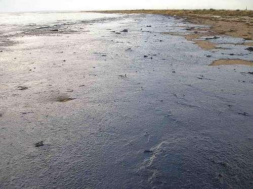 Du pétrole échoué sur une plage, suite à une marée noire en mer Noire (2007). © Marinephotobank CC by 2.0