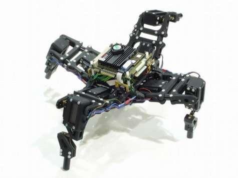 En vidéo : le robot et la conscience de soi