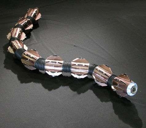Ce robot amphibie a été conçu au Japon. Chaque partie peut communiquer avec une autre. © Hirose Fukushima Lab