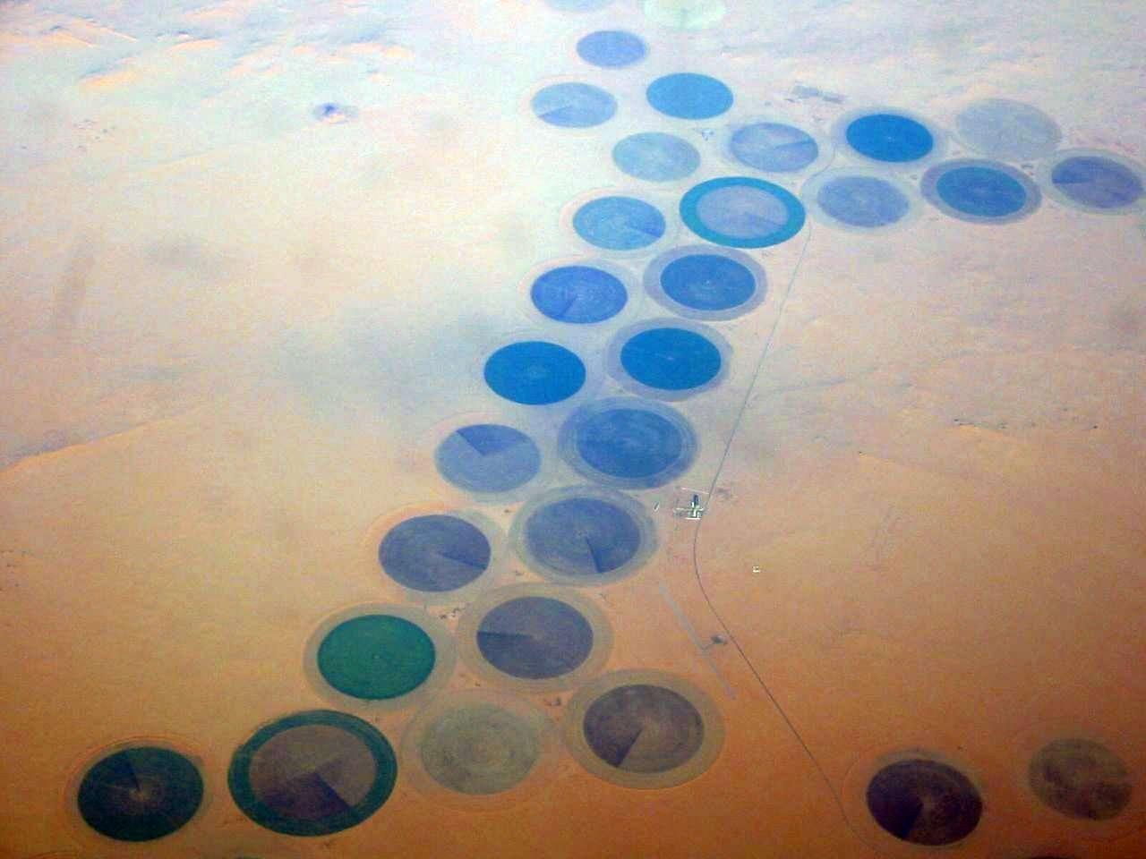 Les cultures réalisées dans le désert (ici en Lybie) ont une forme ronde particulière. Elle est liée à l'utilisation du matériel d'irrigation qui tourne en rond autour d'un axe central. © futureatlas.com, Flickr, CC by 2.0