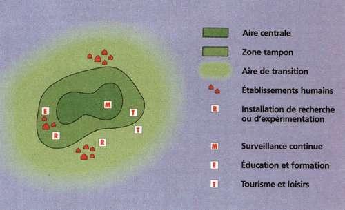 Les différentes zones concentriques d'une réserve de biosphère: de la réserve intégrale au centre à l'aire de transition où différentes activités humaines sont autorisées © Unesco