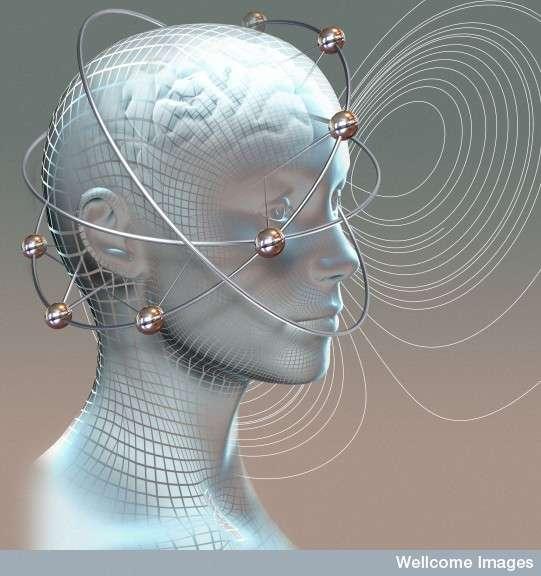 Des chercheurs américains cherchent à établir des profils individuels de l'activité électrique du cerveau afin de déceler à l'avance les crises d'épilepsie, une maladie qui touche entre 0,5 et 1 % de la population mondiale. © Spooky Pooka, Wellcome Images, cc by nc nd 2.0