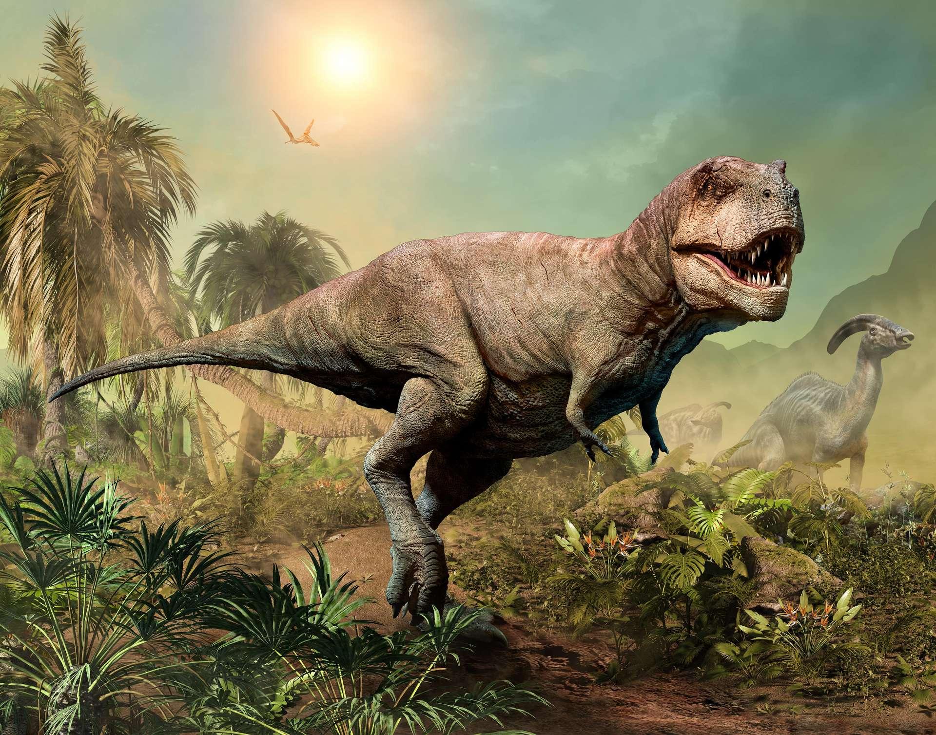 Le tyrannosaure a parcouru les terres du monde il y a 68 à 66 millions d'années, avant de disparaître durant l'extinction du Crétacé-Paléocène. © Warpaintcobra, Adobe Stock