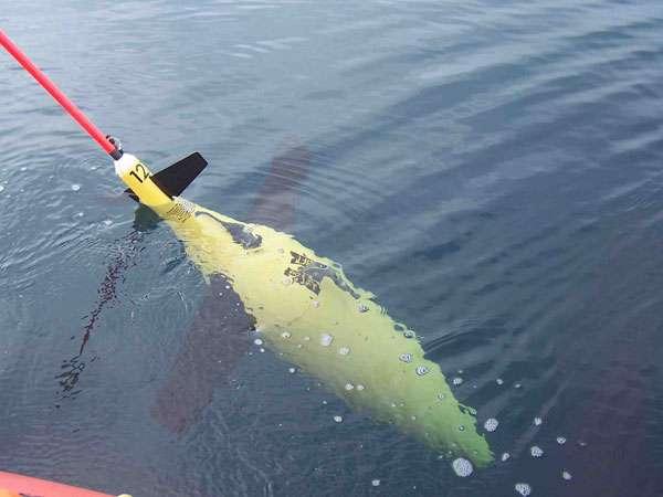 La Noaa utilise des gliders notamment pour détecter la présence de cétacés protégés grâce à leurs chants. © Noaa, Fickr, cc by 2.0